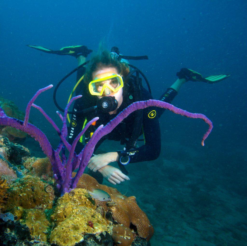 duiken-weetjes