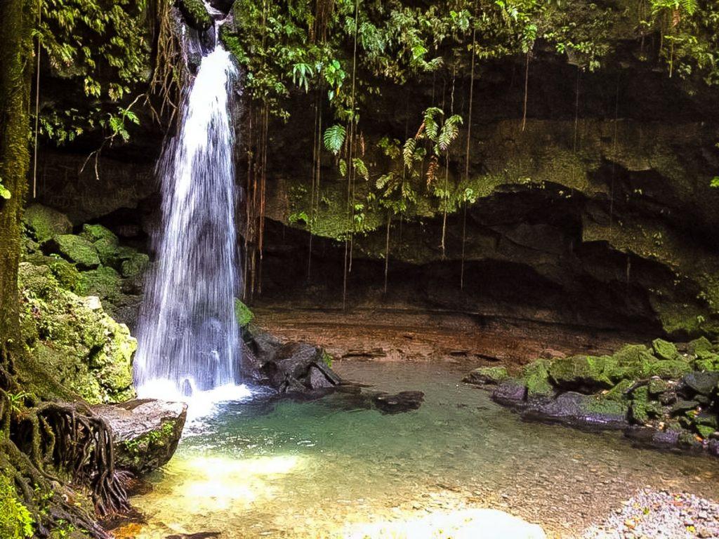 dominica-natuur